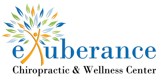 exuberance_logo_transparant
